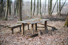 Holztisch mit Bänke im Wald Stockfotos