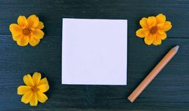 Holztischpapierbleistiftblumen Lizenzfreie Stockbilder