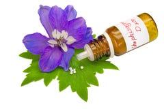 Homéopathie photographie stock libre de droits