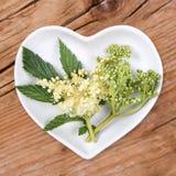 Homöopathie und Kochen mit meadowsweet Lizenzfreie Stockfotos