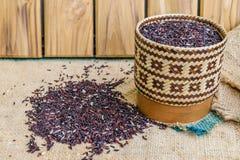 Hom zero czerni jaśminowi ryż w Thailand Obrazy Stock