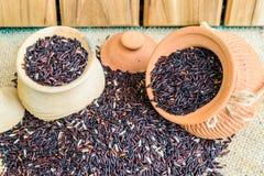 Hom zero czerni jaśminowi ryż w Thailand Zdjęcia Royalty Free