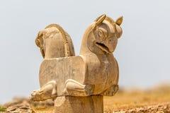 Homa-Vogel in Persepolis Lizenzfreie Stockfotos