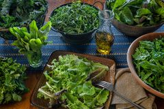 A variety of freshly picked leafy greens ready for salad making. A homage to leafy greens including arugula, chard, mixed greens, kale, and spinach. Also shown stock image