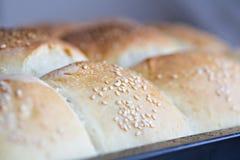 Homamade bread Stock Image