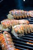 homarów ogony Zdjęcie Stock