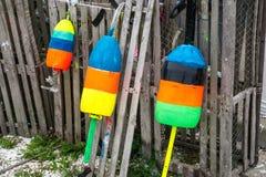 Homar Pociesza Obok homarów oklepów Zdjęcia Stock