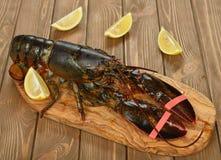 homar surowy Zdjęcia Stock