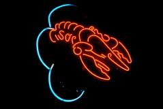 Homara Obłoczny Neonowy światło Zdjęcie Stock