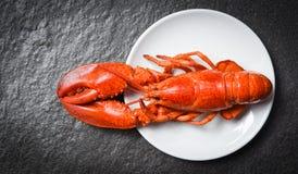 Homard du plat blanc avec le fond fonc? - crevette rose de crevette de fruits de mer photographie stock libre de droits
