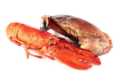 Homard et crabe photos stock