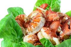homary mięsa zdjęcie stock