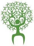 Hombre abstracto del árbol del verde del eco Imagen de archivo
