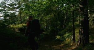 Hombre activo con la mochila grande que camina en las montañas escarpadas en la puesta del sol metrajes