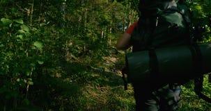 Hombre activo con la mochila grande que camina en paisaje hermoso de la montaña en la puesta del sol metrajes