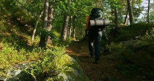 Hombre activo con la mochila grande que camina en la trayectoria escarpada de la montaña en la puesta del sol metrajes