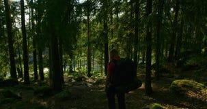 Hombre activo con la mochila grande que camina en trayectoria escarpada de la montaña en la puesta del sol almacen de video