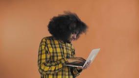 Hombre afroamericano feliz usando el ordenador portátil en fondo anaranjado Concepto de emociones almacen de video