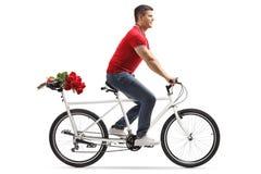 Hombre alegre joven que monta una bicicleta en tándem y que lleva rosas rojas en el asiento trasero imagenes de archivo