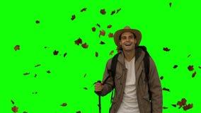 Hombre alegre que se coloca debajo de las hojas que caen en la pantalla verde almacen de video