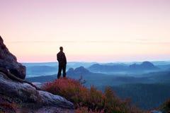 Hombre alto en negro en el acantilado con el arbusto del brezo Parque agudo de las montañas rocosas Imagen de archivo