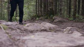 Hombre apto de los jóvenes que corre en el bosque Atleta joven que corre en el bosque almacen de metraje de vídeo
