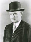 Hombre apuesto en hongo imagen de archivo libre de regalías