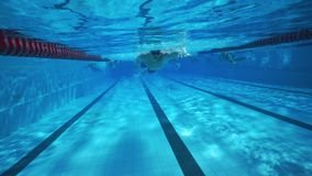 Hombre atlético fuerte que nada bajo el agua en piscina clara del balneario metrajes