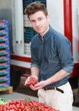 Hombre atractivo joven que elige los tomates Imágenes de archivo libres de regalías