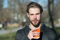Hombre barbudo con la bebida para llevar en el aire fresco Taza de café disponible del control machista en parque soleado Humor d imagen de archivo