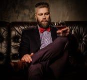 Hombre barbudo pasado de moda que se sienta en sofá de cuero cómodo con el vidrio de brandy aislado en gris Fotografía de archivo