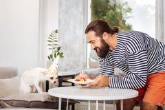 Hombre barbudo que cuida que trae poca placa con la torta de cumpleaños para el perro imagenes de archivo