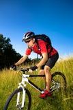 Hombre Biking fotos de archivo libres de regalías