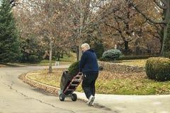 Hombre cabelludo blanco que rueda el árbol imperecedero en conserva en el carro rodado dos abajo de la calle de la vecindad opule imagen de archivo
