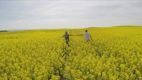 hombre cariñoso y mujer que llevan a cabo las manos mientras que corre en granja de la violación de semilla oleaginosa almacen de video
