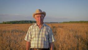 Hombre caucásico mayor en un paseo del sombrero de vaquero en un campo del trigo en la puesta del sol almacen de metraje de vídeo