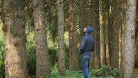 Hombre caucásico sano activo en el varón del bosque que camina en área del parque del arbolado Forma de vida sana almacen de video