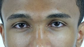 Hombre centellante del ojo, cierre para arriba metrajes