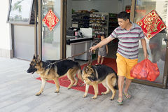 Hombre chino con dos perros en un correo imagenes de archivo