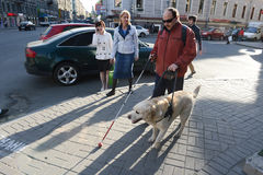 Hombre ciego y perro guía foto de archivo