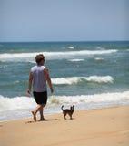 Hombre con alivio de tensi?n de la playa del ejercicio del perro Fotos de archivo