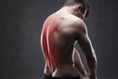 Hombre con dolor de espalda Dolor en el cuerpo humano Carrocería masculina muscular Culturista hermoso que presenta en fondo gris foto de archivo