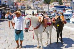 Hombre con el caballo - islas de Grecia Imágenes de archivo libres de regalías