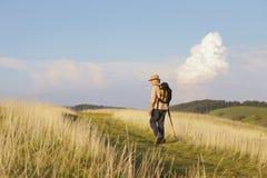 Hombre con el palillo en el prado que mira detrás Imágenes de archivo libres de regalías