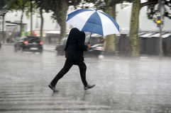Hombre con el paraguas fotografía de archivo libre de regalías
