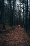 Hombre con el paraguas rojo en bosque del otoño Fotos de archivo libres de regalías