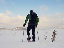 Hombre con el paseo de las raquetas en nevoso archivado Caminante snowshoeing en nieve del polvo Fotografía de archivo libre de regalías