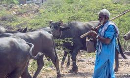 Hombre con la manada de búfalos Foto de archivo