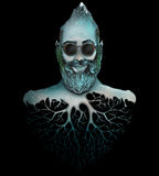 Hombre con la montaña de la cabeza de la barba Imagen de archivo