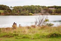 Hombre con la pesca del perro en el río australiano fotos de archivo libres de regalías